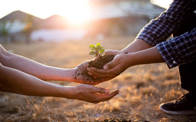 illustration responsabilité environnementale